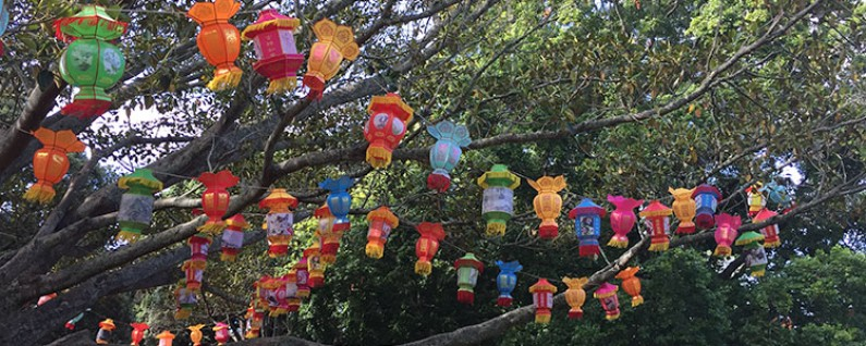 lantern festival featured image